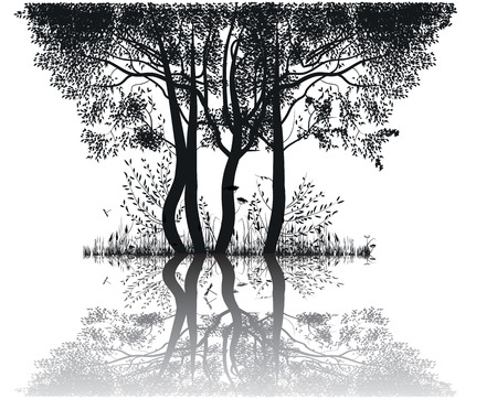 loch:  Silhouettes of trees by the lake Illustration