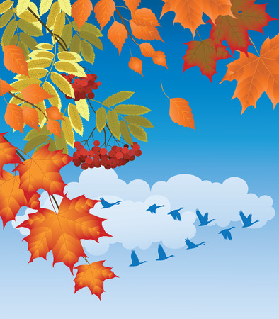 branches of autumn trees and birds flying south Vector