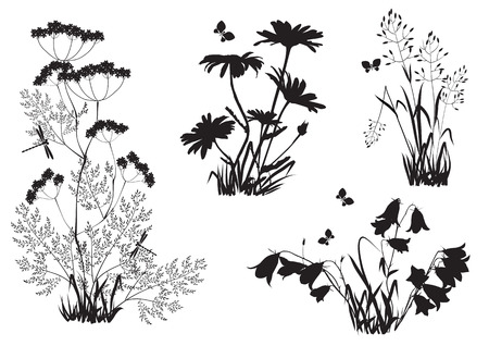 outfield: Silhouettes of the outfield grass and flowers Illustration