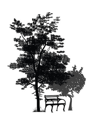 bench alone: silhouette of a bench in the park among the trees