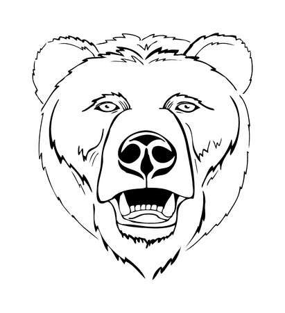 the head of a bear, a stylized image, vector illustration