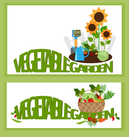 Banner a vegetable garden vegetables in the garden, and text Illustration