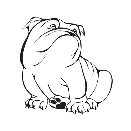 bulldog ensueño, blanco y negro ilustración estilizada