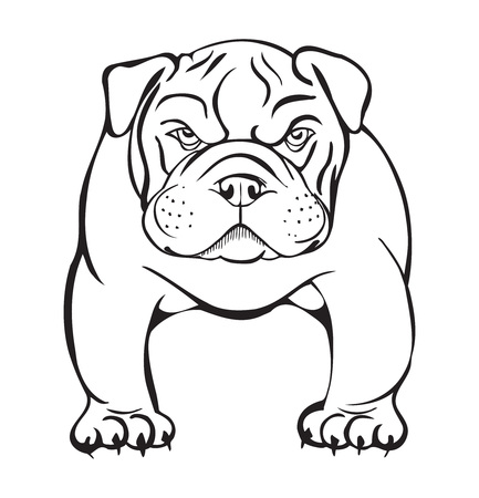 angry bulldog, black and white stylized illustration Ilustração