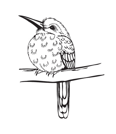 black branch: small bird on a branch, stylized vector illustration