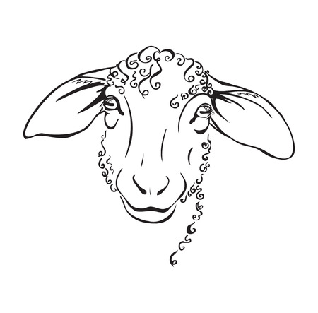 head sheep, stylized black and white vector illustration