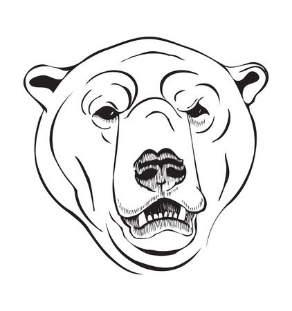 wintery: the head of a polar bear. illustration in a graphic style Illustration