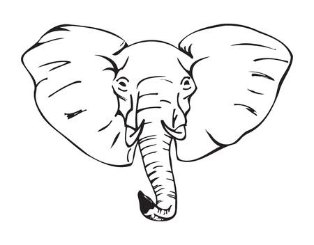 코끼리 머리, 아프리카 코끼리, 흑백 벡터 일러스트 레이 션 일러스트
