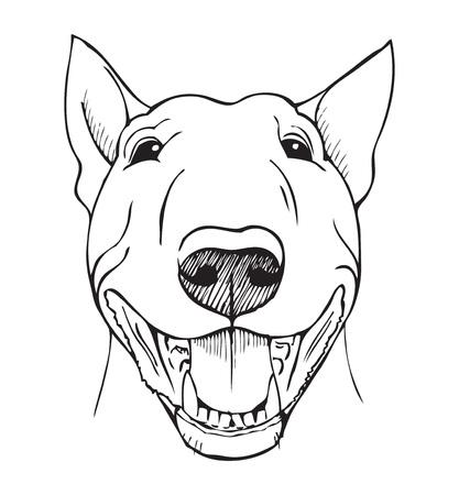 toros bravos: bull terrier, bull terrier cara divertida, negro y blanco ilustración
