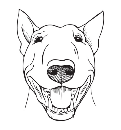 bull's eye: Bull terrier, bull terrier funny face, black and white illustration