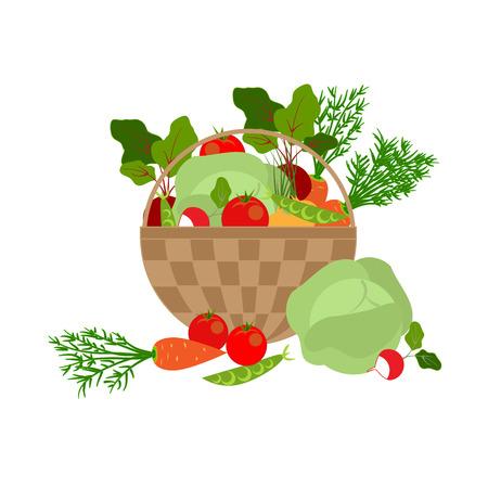 green onion: basket of fresh vegetables on a white background, vector illustration