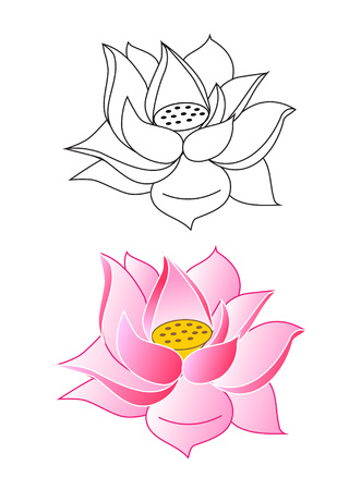 pink lotus flowers coloring