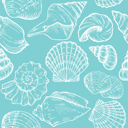 sea shell: sea shells blue and white seamless background
