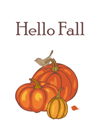 Hello fall, autumn Pumpkin harvest, template for advertising, greeting cards, invitations, illustration