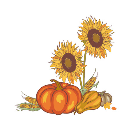 harvest corn, sunflower and pumpkin, illustration Illustration