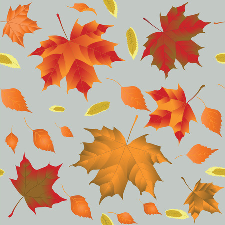 autumn leaves on a light gray background, vector illustration, seamless pattern