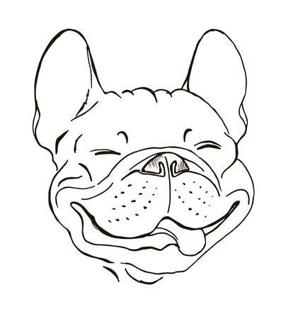French bulldog, portrait, happy dog face, sketch, black and white graphic vector illustration