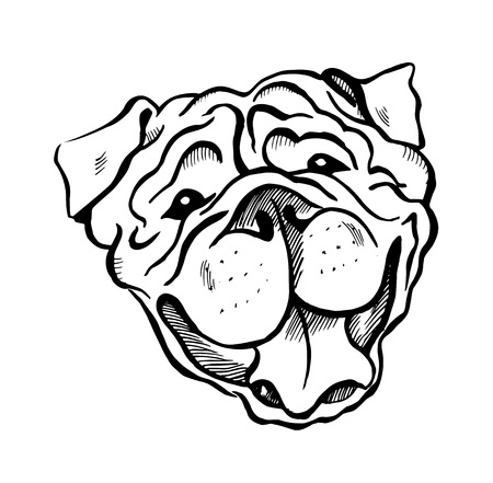 English Bulldog, smiling dog face, portrait, sketch, black and white vector illustration