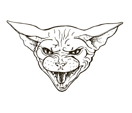angry cat of the Sphinx breed, head of a bared cat, portrait, black and white graphic vector illustration