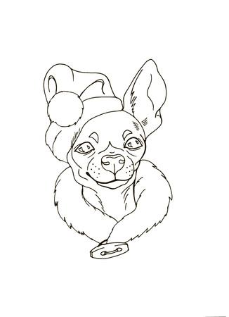 Chihuahua En Bonnet De Noel Chéri En Costume De Noël Portrait De Chien Coloriage Illustration Vectorielle