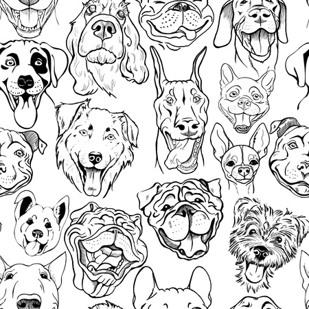 Pattern with muzzles of dogs of different breeds, black and white seamless graphic vector illustration
