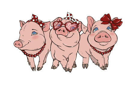 Three cheerful elegant pigs fashionista, vector illustration on white background