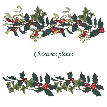 Composición de plantas navideñas, ramas de abeto, acebo, conos, hiedra y muérdago, ilustración vectorial