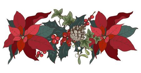 Composición de plantas navideñas, flor de pascua, acebo, conos, hiedra y muérdago, ilustración vectorial