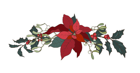 Composition of Christmas plants, poinsettia, Holly, cones, ivy and mistletoe, vector illustration