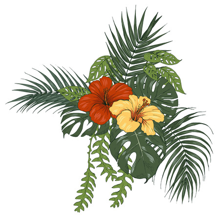 Tropical plants and flowers, palm and monstera leaves, hibiscus flowers, vector illustration