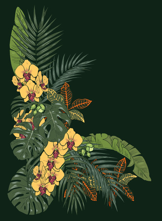 Tropical plants and flowers, palm and monstera leaves, Orchid  flowers, vector illustration Çizim