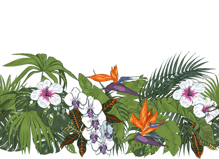 Tropical flowers and leaves, orchids, hibiscus and strelitzia, palm and monstera leaves, seamless pattern, vector illustration