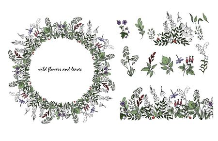 wild flowers and leaves in Doodle style, composition of  stylized wild plants, seamless brush, a wreath and some plants, vector illustration on white background Ilustracja
