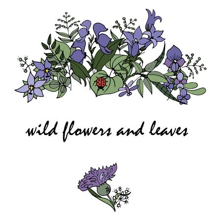 wild flowers and leaves in Doodle style, composition of  stylized wild plants, vector illustration on white background