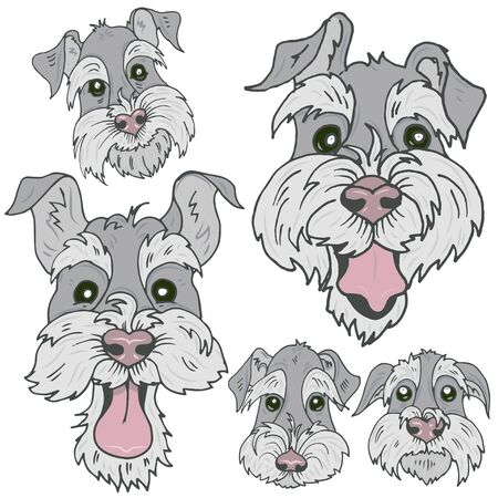 Dogs of Scottish Terrier  breed faces with different emotions, funny, sad, curious and offended faces of Terriers, vector illustration