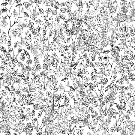 wild flowers and leaves in Doodle style, composition of  stylized wild plants, seamless vector illustration on white background
