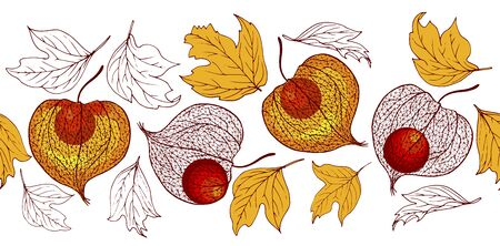 Physalis fruit and autumn leaves, seamless vector illustration