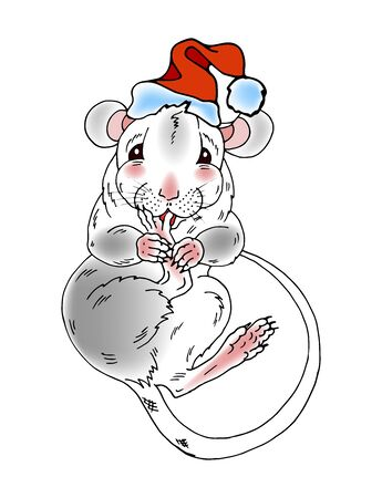 Rat, symbol of the year 2020 according to the Chinese calendar, Charming rat in Santa hat, vector illustration