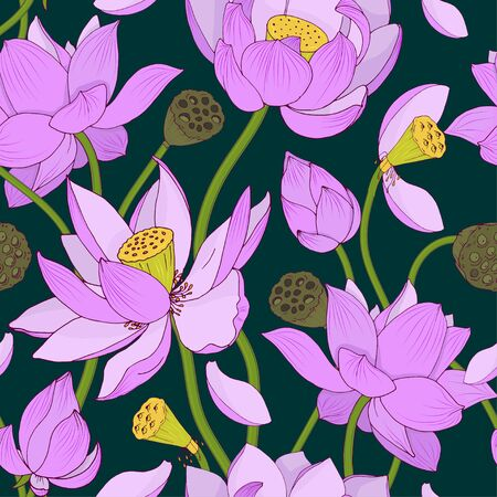 Pink Lotus flowers and buds on dark background, seamless vector illustration