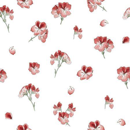 garden geranium flowers on white background, seamless vector illustration