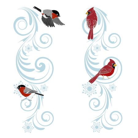 Christmas ornament and birds cardinals and bullfinches, Christmas design template, vector illustration Ilustracja