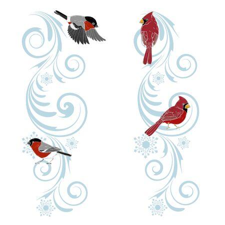Christmas ornament and birds cardinals and bullfinches, Christmas design template, vector illustration Vektorové ilustrace