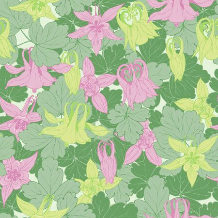 Flowers, buds and leaves of Aquilegia, seamless vector illustration.