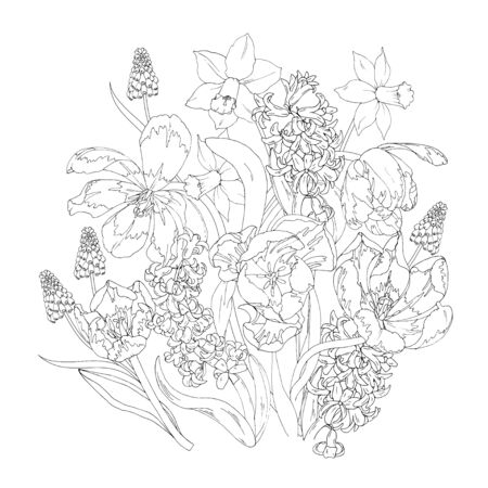 Blooming spring flowers, tulips, daffodils, hyacinths and Muscari, coloring page, black and white vector illustration