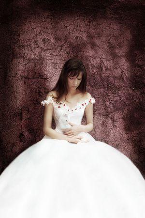 hair dress: La novia con el gato blanco  Foto de archivo