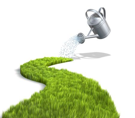 watering of plants: Growth Stock Photo