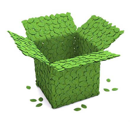 Eco package Stock Photo - 6449728