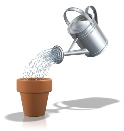 watering can: Watering