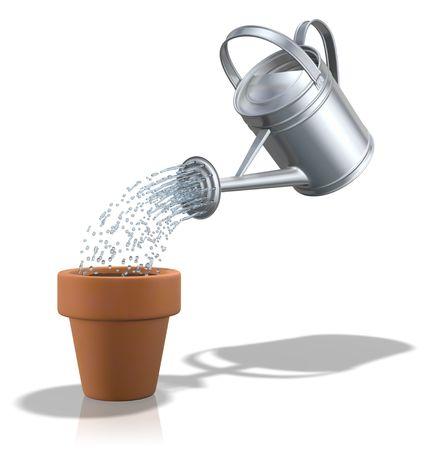 watering plants: Watering