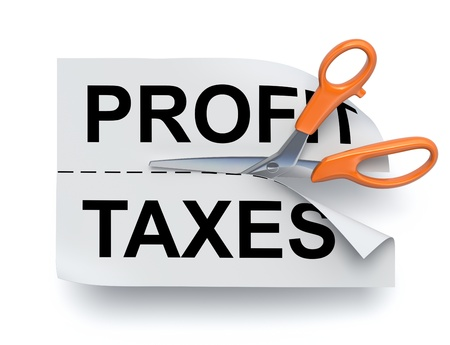 deduction: Profit and taxes